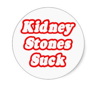 WHY Wednesday: Why Kidney Stones are a B*tch
