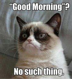 Morning person Monday: I'm notone.